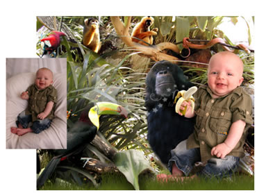 In the Jungle Magical Portrait - A fun background for your little boy!